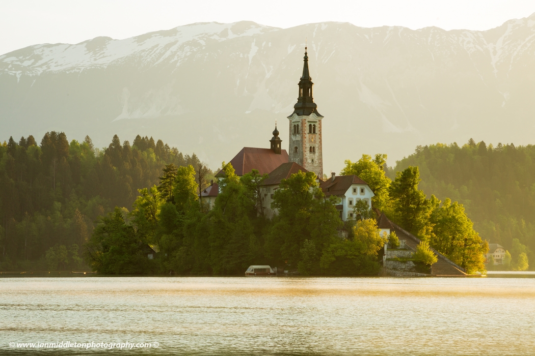 Morning spring light at Lake Bled's island church with the Karavanke Mountains behind, Slovenia.