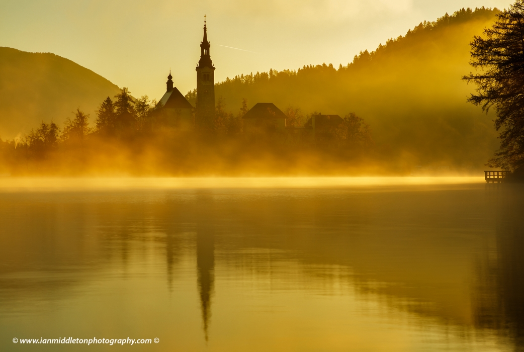 Warm morning misty sunlight over Lake Bled and the island church of the assumption of Mary, Slovenia.
